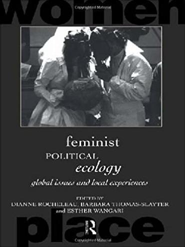 Feminist Political Ecology: Global Issues and Local Experience (Routledge I ...